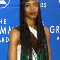Erykah Badu - Photo by Jeffrey Mayer/WireImage