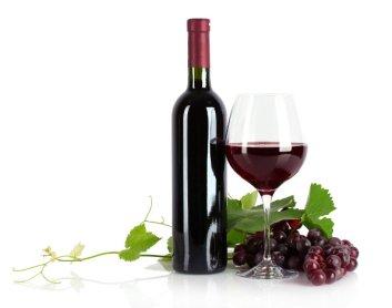 poder-do-vinho-materia